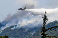 Sinh viên bị phạt 27 triệu euro vì... nướng thịt gây cháy rừng ở Italy