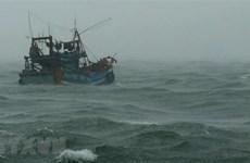 Cứu nạn tàu cá bị hỏng máy và một ngư dân bị gãy ngón tay