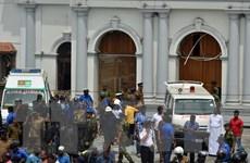 Nổ tại nhà thờ và khách sạn ở Sri Lanka: Số người chết tăng mạnh
