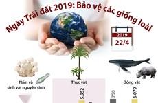 [Infographics] Ngày Trái Đất 2019: Nỗ lực bảo vệ các giống loài