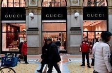 Kering S.A tốn khoảng 1,4 tỷ euro để dàn xếp bê bối thuế của Gucci
