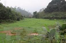 Công ty khai khoáng ở Yên Bái 'biến' ruộng lúa thành đồng hoang