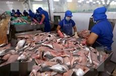 Giữ vững vị thế sản phẩm xuất khẩu chủ lực cho cá tra Việt Nam