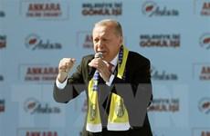 Tổng thống Thổ Nhĩ Kỳ kêu gọi tiến hành lại cuộc bầu cử địa phương