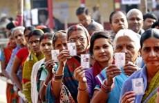 Hơn 63% cử tri đi bỏ phiếu giai đoạn 6 bầu cử Hạ viện Ấn Độ