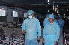 Thủ tướng đi kiểm tra tình hình phòng, chống dịch tả lợn châu Phi