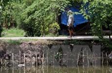 Sạt lở bờ sông, xói lở bờ biển ở Kiên Giang diễn biến phức tạp