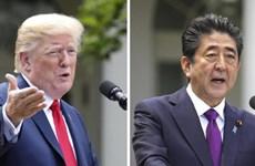 Chính sách 'ngoại giao quyến rũ' của ông Shinzo Abe với Mỹ