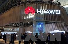 Trung Quốc: Sức ép của Mỹ với Huawei là hành động 'bắt nạt' về kinh tế
