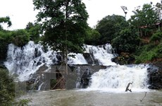 Ngừng thi công Thủy điện Đắk R'kéh để đánh giá tác động môi trường