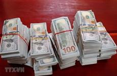 An Giang: Thu giữ 470.000 USD do đối tượng nghi buôn lậu bỏ lại