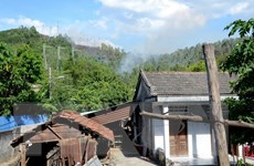 Đà Nẵng: Cháy rừng tại Hòa Vang, việc chữa cháy gặp khó khăn