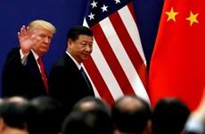 Thế giới mong đợi gì về cuộc gặp giữa ông Trump và ông Tập Cận Bình?