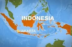 Indonesia: Động đất mạnh 7,1 độ tại đảo Sulaweisi, cảnh báo sóng thần