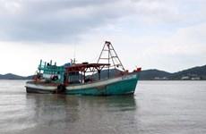 Khuyến cáo ngư dân thực hiện các quy định khắc phục 'thẻ vàng' IUU