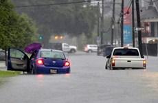 Bang Louisiana của Mỹ ban bố tình trạng thiên tai khẩn cấp