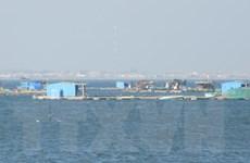 Di chuyển lồng bè thủy sản, trả lại mỹ quan trên biển Bình Sơn