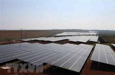 Thủ tướng yêu cầu kiểm tra thông tin về phát triển điện Mặt Trời