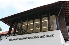 Singapore lập ngân hàng hạt giống để bảo tồn sự đa dạng thực vật
