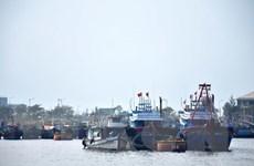 Đánh bắt kém hiệu quả, nhiều tàu cá ở Kiên Giang không ra khơi