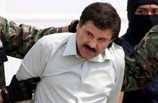 Trùm ma túy khét tiếng người Mexico El Chapo bị kết án tù chung thân