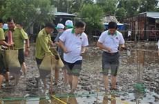 Phát động phong trào trồng rừng ngập mặn trên toàn quốc
