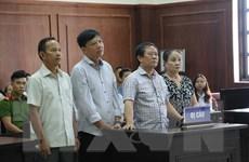 Tuyên án xét xử phúc thẩm vụ buôn lậu lô gỗ trắc hơn 63 tỷ đồng