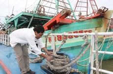 Ứng phó bão số 3: Nam Định di dời dân khỏi vùng nguy hiểm