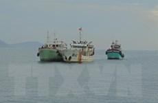 Tàu kiểm ngư lai dắt hai tàu cá cùng 10 ngư dân gặp nạn vào bờ