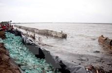Hình ảnh nước biển Tây dâng cao bất thường, nguy cơ vỡ đê phòng hộ