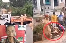 Khởi tố đối tượng lái xe chở gỗ đâm bị thương cảnh sát giao thông