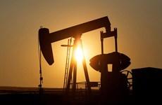 Nhu cầu dầu mỏ thế giới tăng với tốc độ chậm nhất kể từ năm 2008