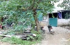 Lạng Sơn: Xử lý các vi phạm về đất đai tại Cửa khẩu Tân Thanh