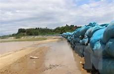 Đắk Lắk: Vỡ đê bao Quảng Điền, hơn 1.000ha lúa ngập trong nước