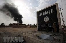 Ngoại trưởng Mỹ: IS đang củng cố sức mạnh ở một số khu vực