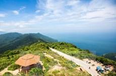 Xảy ra nhiều vụ tai nạn trên bán đảo Sơn Trà khi du khách đi 'phượt'