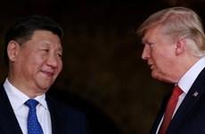 Tình thế của lãnh đạo Mỹ-Trung trong cuộc chiến thương mại