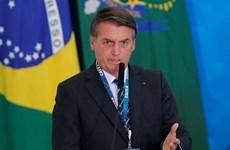 Tổng thống Brazil không tham gia hội nghị thượng đỉnh về Amazon