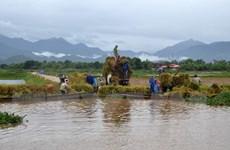 Thừa Thiên-Huế: Mưa to gây úng ngập nhiều vùng, 1 người chết