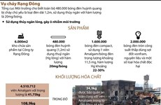 [Infographics] 480.000 bóng đèn huỳnh quang của Rạng Đông có thủy ngân