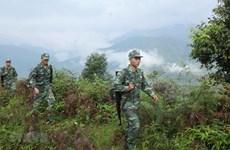 Cuộc chiến chống ma túy của những chiến sỹ mang 'quân hàm xanh'