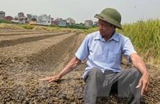 Niềm đam mê sáng chế của một nông dân 'chân lấm, tay bùn'