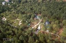 Kỷ luật 39 cán bộ liên quan đến vụ 'xẻ thịt' đất rừng Sóc Sơn
