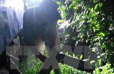 Tây Ninh: Phát hiện vụ xả trộm chất thải công nghiệp ra môi trường