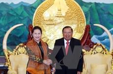 Tiếp tục vun đắp mối quan hệ đặc biệt giữa hai nước Việt Nam-Lào