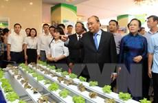 Thủ tướng: Hải Phòng đẩy nhanh tiến độ tái cơ cấu ngành nông nghiệp