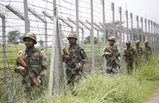 Đấu súng tại khu vực biên giới Ấn Độ-Pakistan gây nhiều thương vong