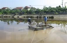 Công ty cấp nước Nghệ An xả bùn thải ra hồ điều hòa, gây ô nhiễm