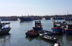 Quảng Ngãi: Nạo vét, chống bồi lấp luồng tàu ra vào cảng Sa Huỳnh