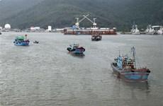 Mưa lớn trên diện rộng, hàng ngàn tàu thuyền neo đậu tránh bão số 5
